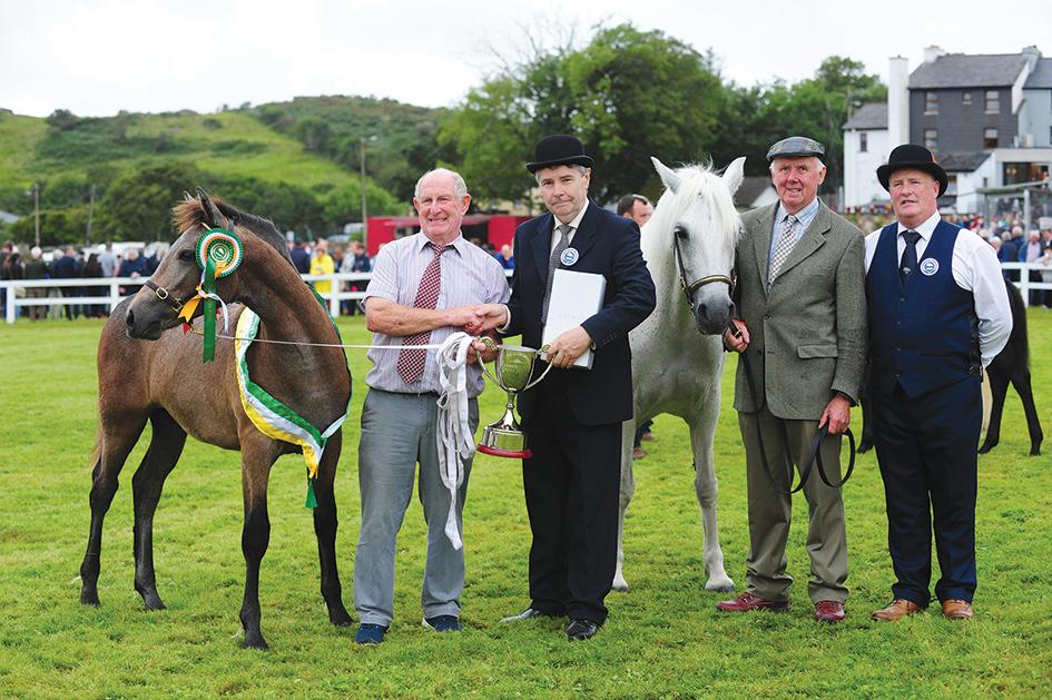 Clifden Pony Show a resounding success